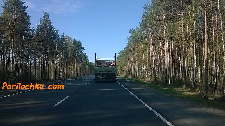 лес, дорога, грузовик с бревнами